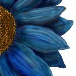 Blue flower drawing