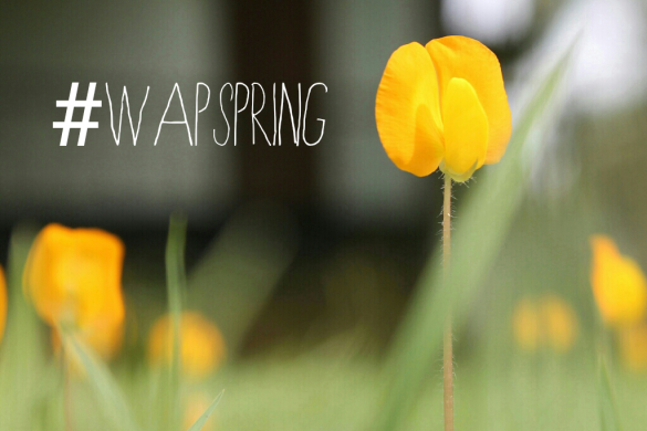 Hopeful Photography: The #WAPspring Finalists