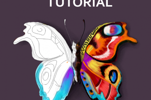 Step by Step Tutorial on How to Draw a Butterfly