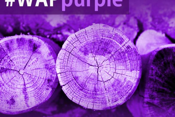 The Purple Photography Weekend Art Project #WAPpurple