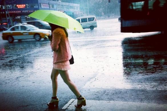 Rainy Day Photo Gallery