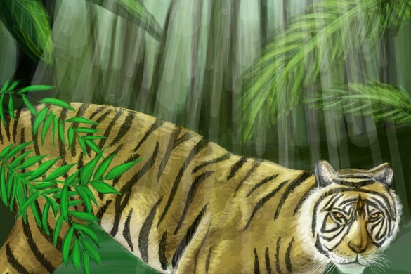 Wild Art: The Top 10 Contest Winners from Jungle Drawing Challenge