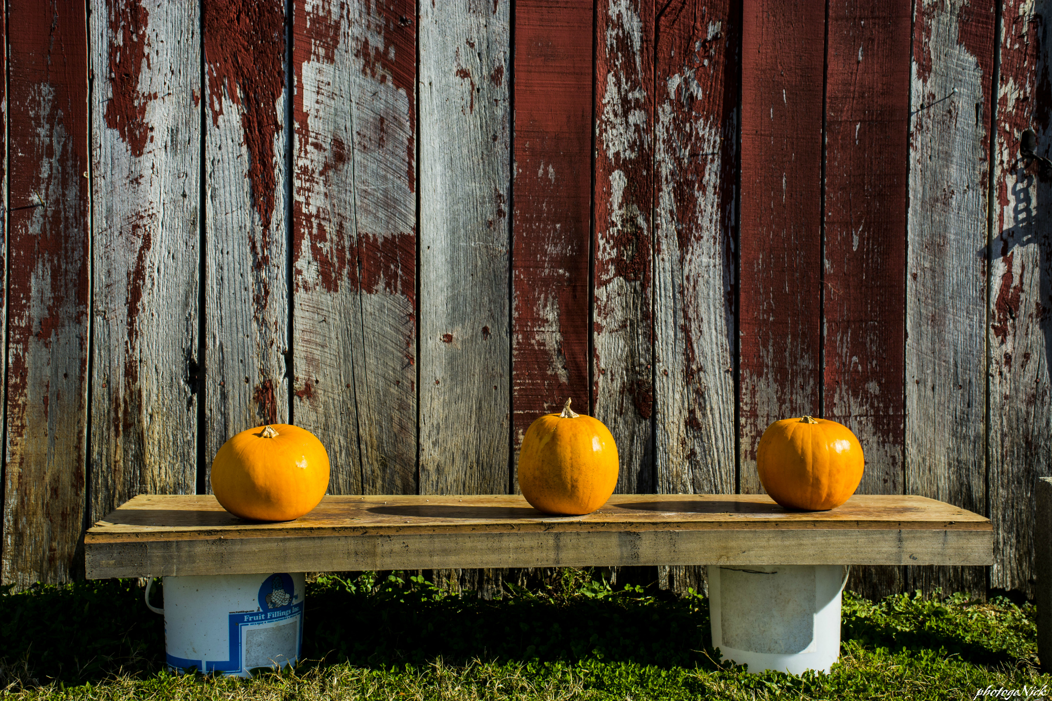 Yellow pumpkins on the wood stand