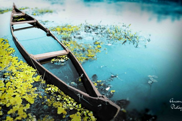 Photo Gallery of Abandoned Boats