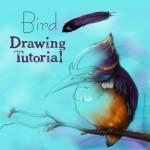 Bird drawing tutorial