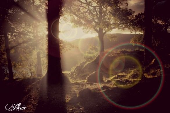 How to Create Lens Flare: Enhancing your Photos with the Use of Flare