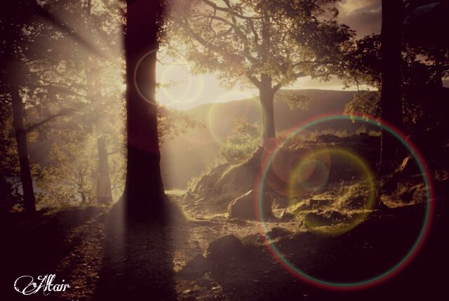 lens flare photography