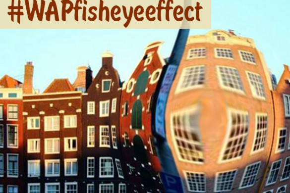 The Fisheye Photo Effect Weekend Art Project