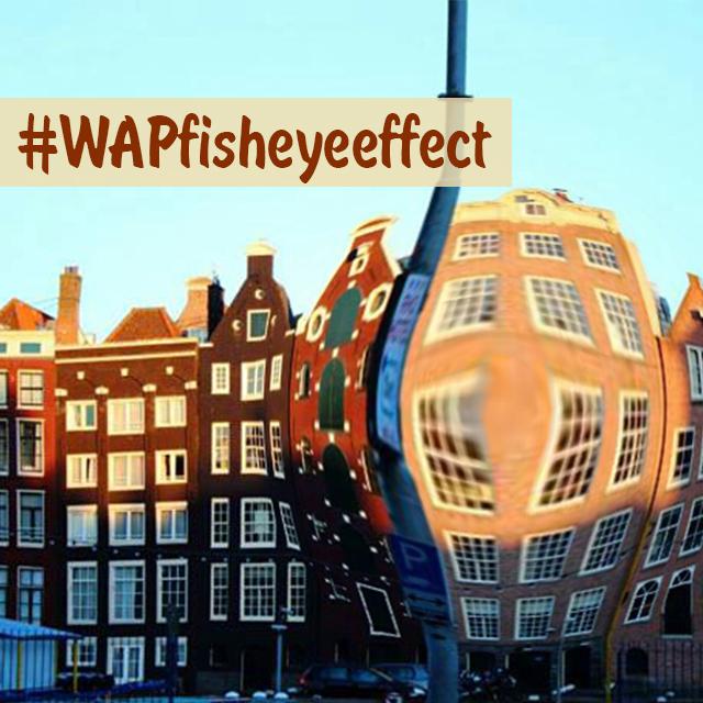 fisheye photo effect art contest