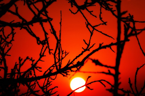 Photo Gallery: The Setting Sun
