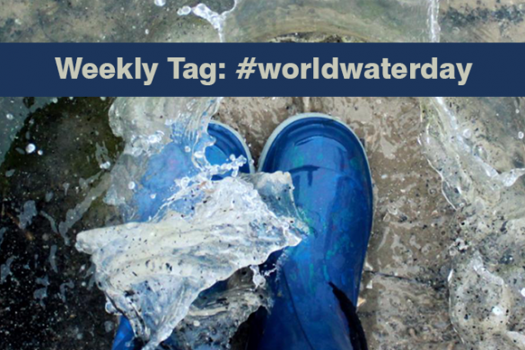 Announcing Our First Weekly Tag! Celebrate World Water Day with the Tag #worldwaterday