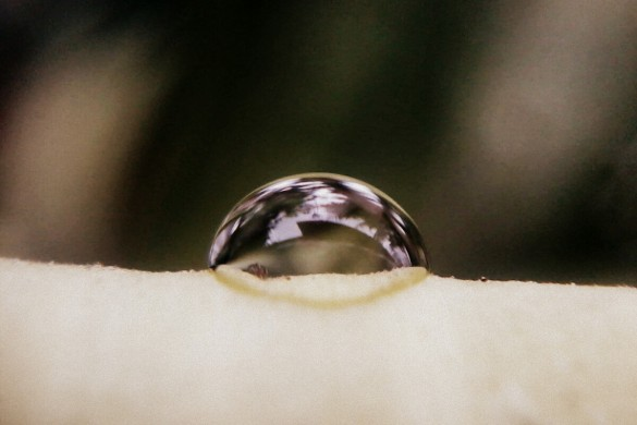 Water Drops Captured by PicsArtists
