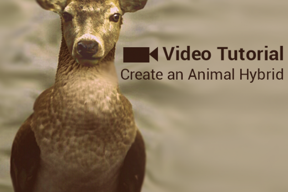 Photo Editing Tutorial on How to Create an Animal Hybrid with PicsArt
