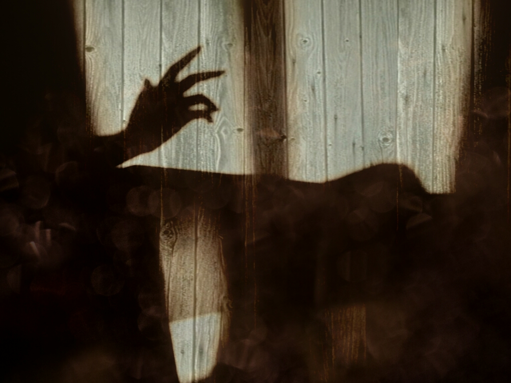 Shadow of the hand on wood wall