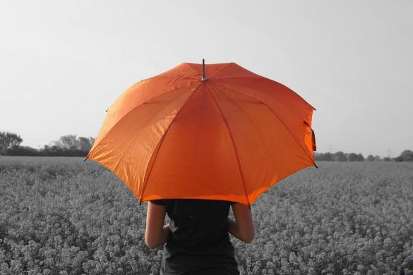 PicsArtists Capture Umbrellas of All Colors