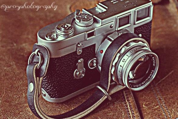 Photo Gallery: Camera on Camera Action!