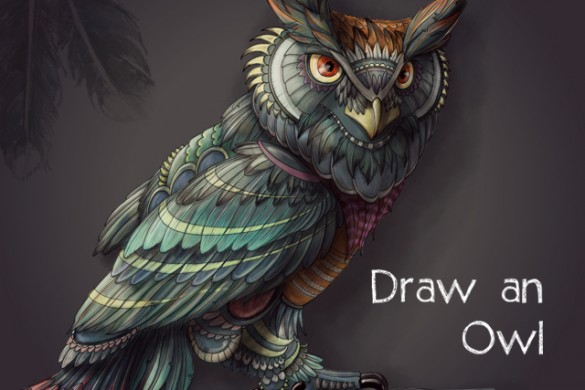 Have a Hoot and Enter Our Owl Drawing Challenge