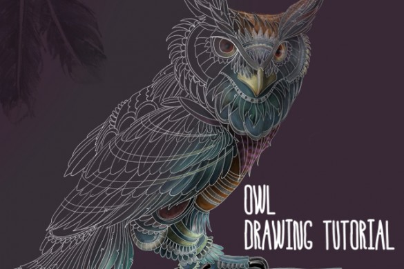 How to Draw a Magnificent Owl with PicsArt