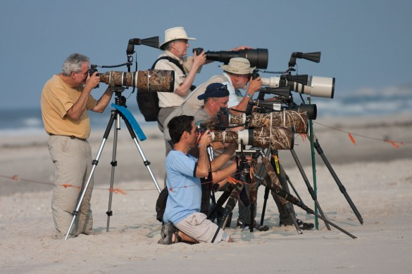 5 Things Most Wildlife Photographers Won't Tell You