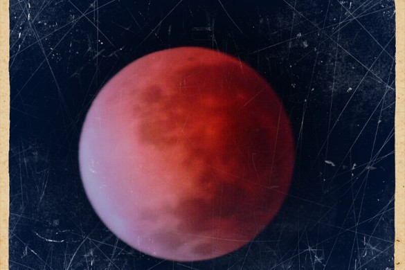 Users Share Photos of Wednesday's Blood Moon, Total Lunar Eclipse