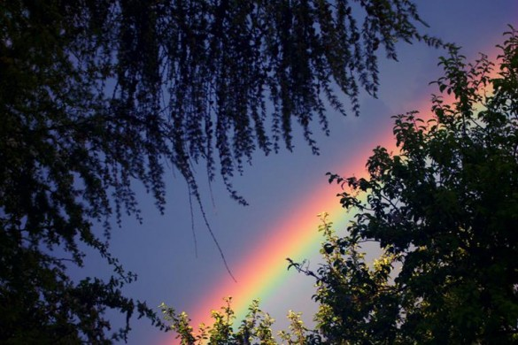 Photo Gallery of Rainbows: When Light Shows Off