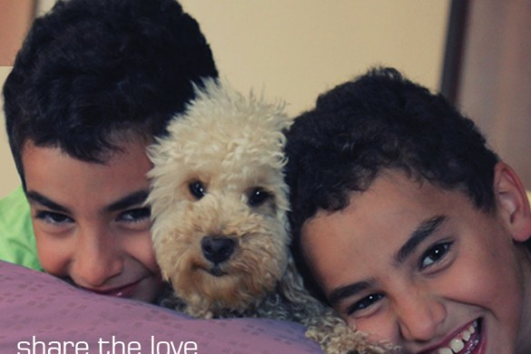 Share the Love with the Weekly Tag #mansbestfriend