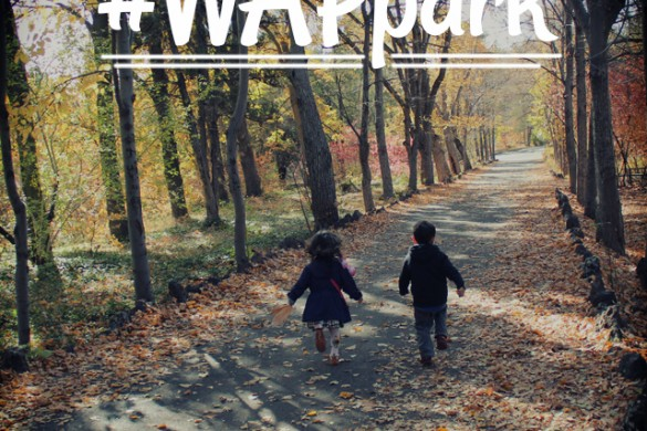 Step Outside this Weekend with #WAPpark