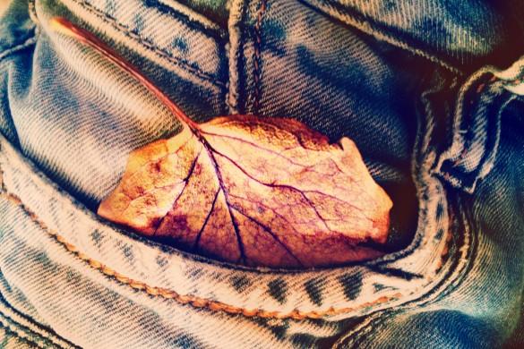 PicsArtists Create a #mydenim Quilt