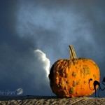 Photo of a pumpkin on sky background