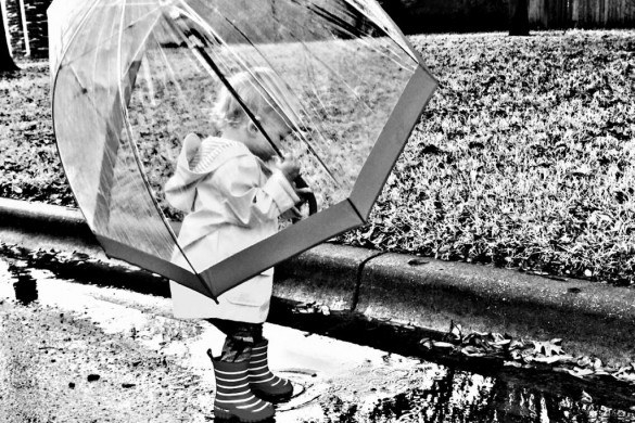 Sate Your Thirst with the #rainyday Weekly Tag Photo Gallery