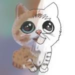 Cat Drawing Tutorials