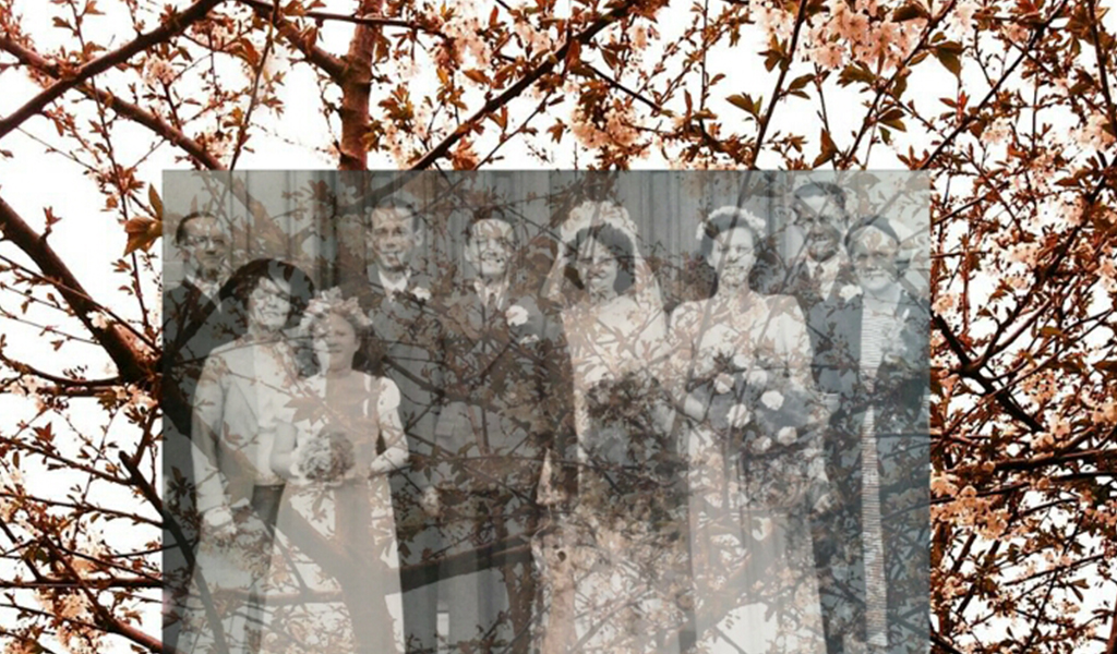 Transparent photo of a family on trees on background
