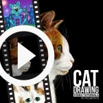 Time-lapse Videos of Cat Drawings
