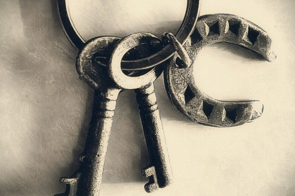 PicsArtists Unlock the Secret to Great Photography with #keys
