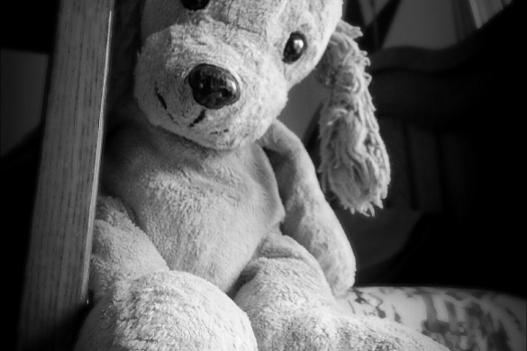 Snuggle Up with This #stuffedtoy Photo Gallery