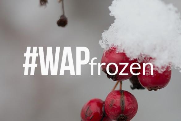 Capture Glimmering Ice, Enter the #WAPfrozen Weekend Art Project