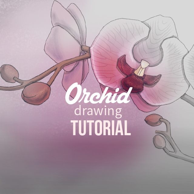How to Draw Orchids with PicsArt