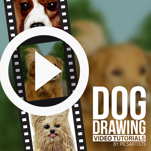 Time-Lapse Videos of Dog Drawings
