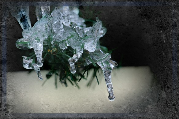 Picsartists Share Some Lens Melting Ice Photos