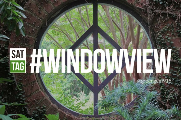 Show Us Your View with the Saturday Hashtag #windowview