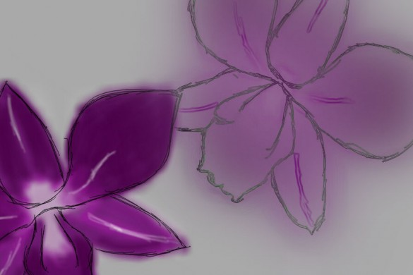 PicsArt Users Share Orchid Drawing Tutorials