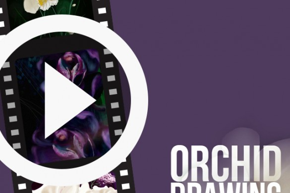 Users Share Orchid Flower Drawing Videos