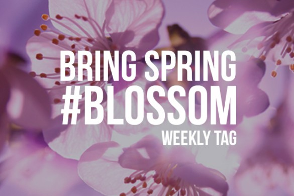 Bring Spring with the Weekly Tag #blossom