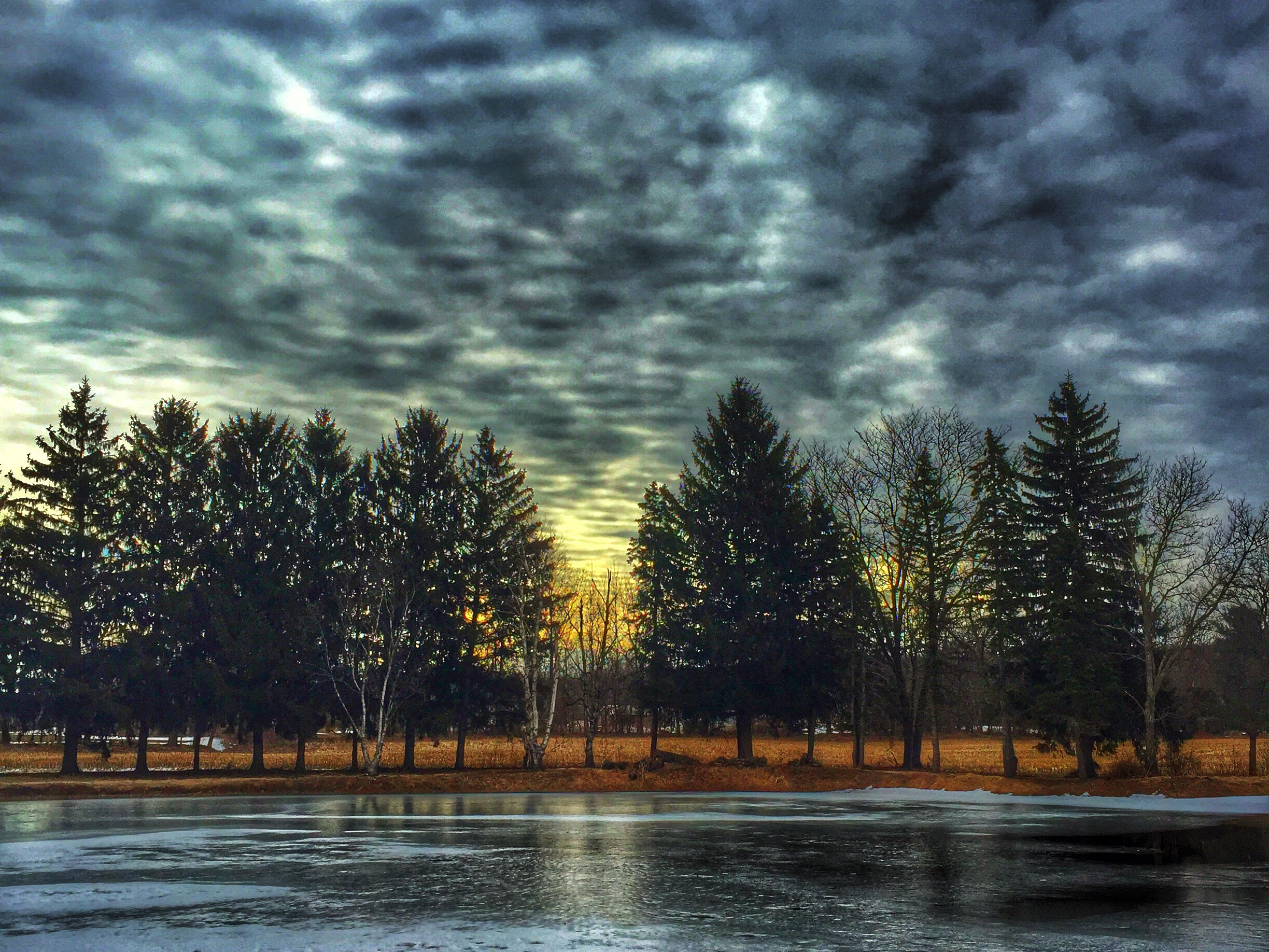 photo of wood, lake and sunrise from March magazine