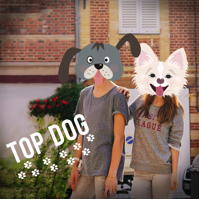 couple with dog stickers on their faces and top dog text