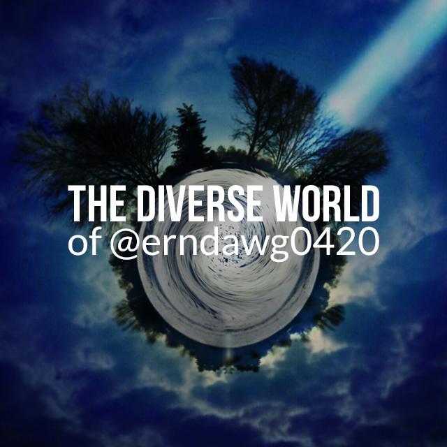 The diverse world by Ern Davis through picsart