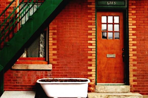 10 Winning Doors from the Weekend Art Project