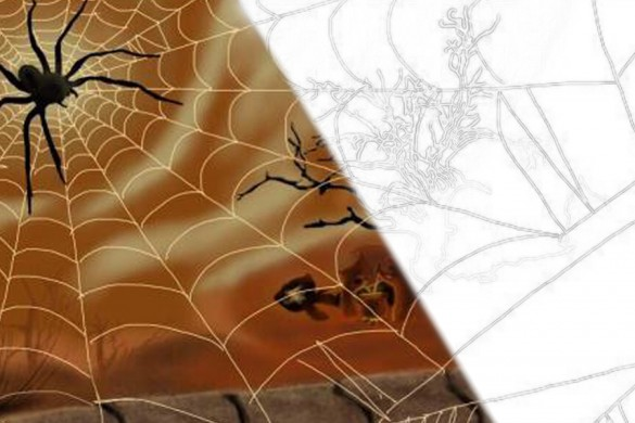 Users Share Spiderweb Drawing Tutorials