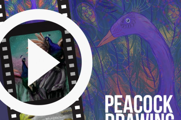 PicsArtists Share Time-Lapse Videos of Peacock Drawings