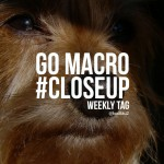 Go macro close up text on the photo of a dog
